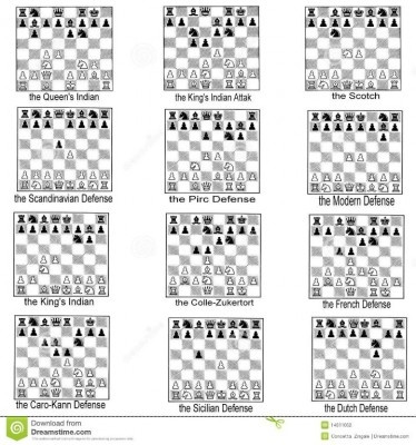 collection-chess-openings-14511052.jpg